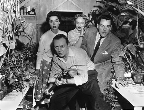 """INVASION OF THE BODY SNATCHERS"" Kevin McCarthy, King Donovan, Carolyn Jones, Dana Wynter, Allied Artists, 1956, I.V."