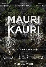 Mauri o te Kauri