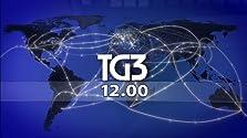 Tg3 Linea Notte (2008– )