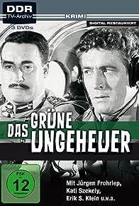 Primary photo for Das grüne Ungeheuer