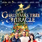 Terry Kiser, Jill Whelan, Kevin Sizemore, Claudia Esposito, Emily Capehart, Barrett Carnahan, and Siomha Kenney in A Christmas Tree Miracle (2013)