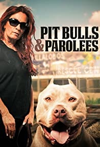 Primary photo for Pit Bulls and Parolees