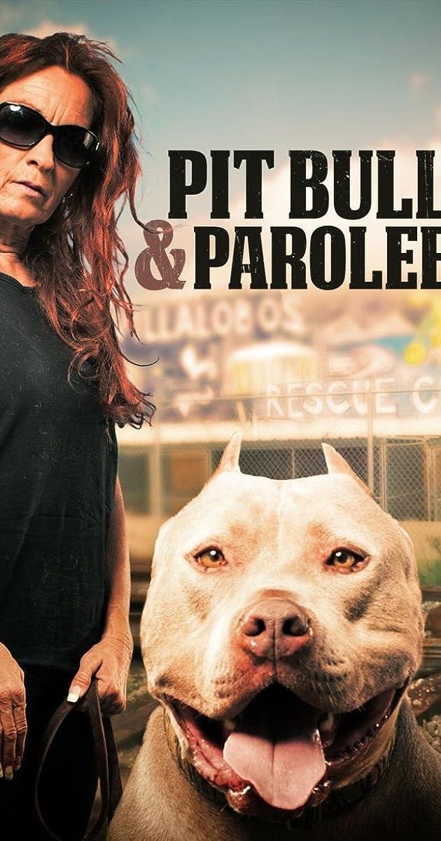 Pit Bulls And Parolees Season 5 Imdb