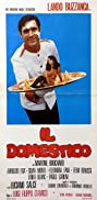 My Darling Domestic (1974) Poster