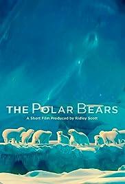 The Polar Bears Poster