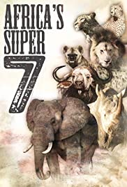 Africa's Super Seven Poster