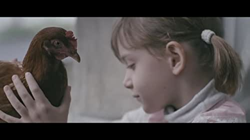 A striking and deeply touching story about a 6-year old girl growing up during unstable times in Sarajevo, and how her day-to-day life gets jazzed up when a chicken joins her family.  Any question? Ask festival@salaudmorisset.com Visit thechicken-shortfilm.com Be a fan on facebook.com/thechickenshortfilm and follow @thechicken_film  THE CHICKEN - Una Gunak - Germany, Croatia / 2014 / 15 min / Color  Premiere in Cannes - Critics Week - Mai 2014 Subtitles available: English, French, Spanish, Italian, Portuguese, Czech and more
