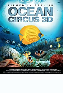 Psp movie mp4 download Ocean Circus 3D: Underwater Around the World by none [1080pixel]
