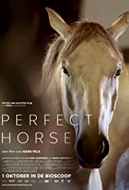Perfect Horse Poster