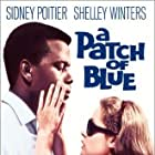 Sidney Poitier and Elizabeth Hartman in A Patch of Blue (1965)