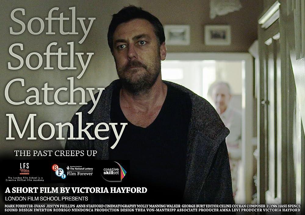 Softly Softly Catchy Monkey 2016