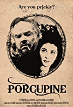 Primary image for Porcupine
