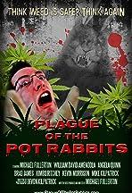 Plague of the Pot Rabbits