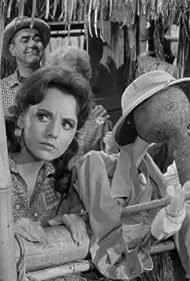 Jim Backus, Natalie Schafer, and Dawn Wells in Gilligan's Island (1964)