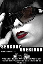 Primary image for Sensory Overload