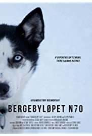 Norway's Great Sled Dog Race: Bergebyløpet N70