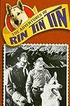 The Adventures of Rin Tin Tin (1954)