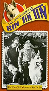 New movie to download Rin Tin Tin and the Flaming Forest [1280x960]