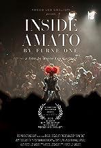 Inside Amato