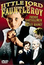 Primary image for Little Lord Fauntleroy