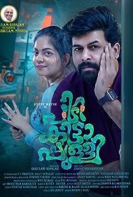 Pidikittapulli (2021) HDRip Malayalam Movie Watch Online Free