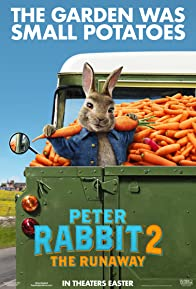 Primary photo for Peter Rabbit 2: The Runaway