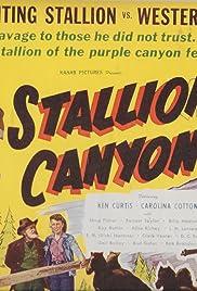 Stallion Canyon Poster