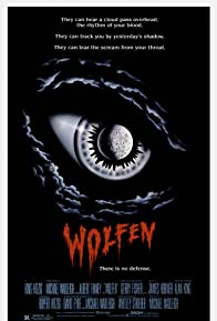 Primary photo for Wolfen
