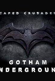 Caped Crusader: Gotham Underground Poster