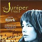 The Juniper Tree (1990)