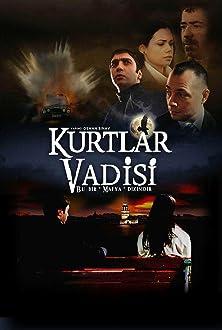 Kurtlar Vadisi (2003–2005)