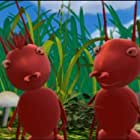 Miss Spider's Sunny Patch Friends (2004)
