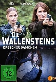 Die Wallensteins - Dresdner Dämonen Poster