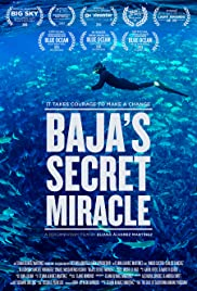 Baja's Secret Miracle Poster