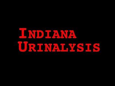 Top 10 movie downloads sites Indiana Urinalysis [mov]