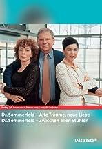 Dr. Sommerfeld - Alte Träume, neue Liebe