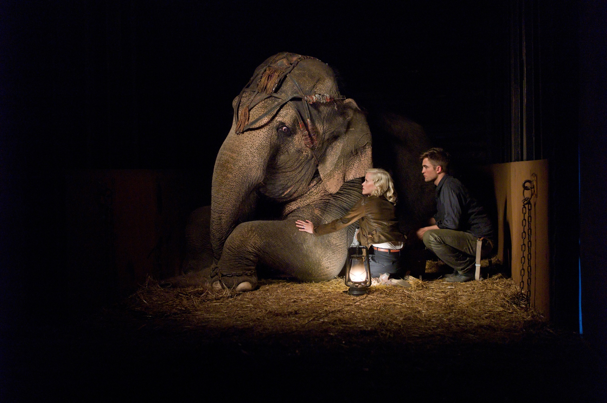 Reese Witherspoon, Robert Pattinson, and Tai in Water for Elephants (2011)