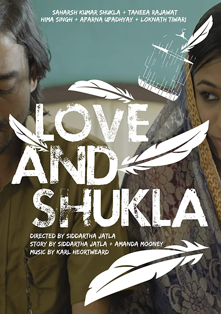 Love and Shukla 2018 Hindi 300MB Netflix HDRip 480p x264