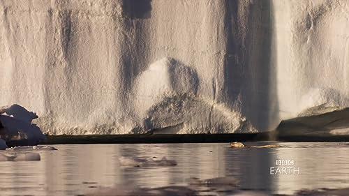 Frozen Planet: Summer