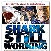 The Shark Is Still Working (2007)