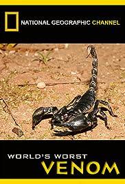 World's Worst Venom Poster