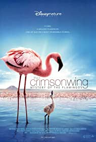 The Crimson Wing: Mystery of the Flamingos (2008)