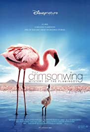 The Crimson Wing: Mystery of the Flamingos (2008) 720p