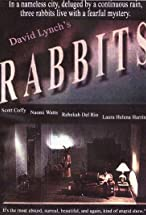 Primary image for Rabbits