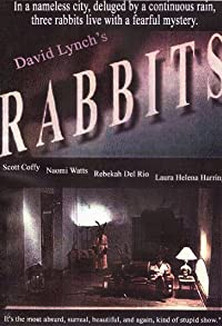 Primary photo for Rabbits