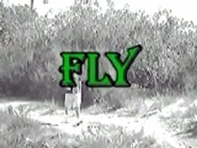 the Fly download