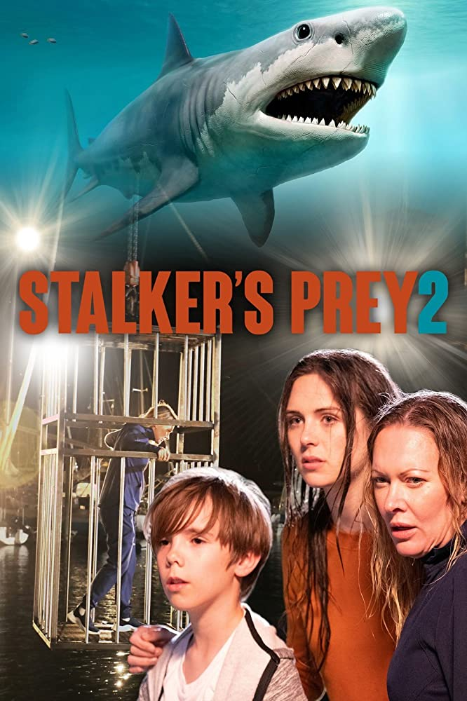 Stalker's Prey 2 2020 English 282MB HDRip ESubs Download
