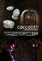 coccolith