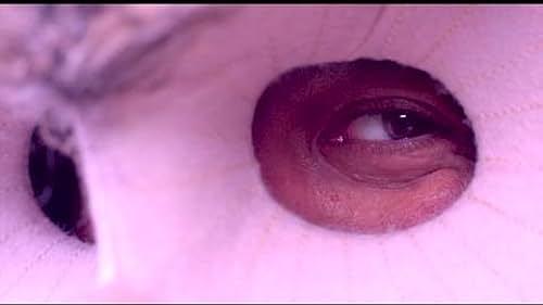 Trailer for Hibou