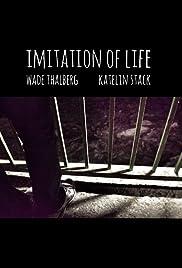 Imitation of Life Poster